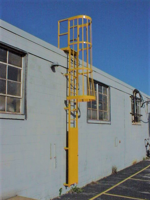 Yellow Fixed Cage Ladder with Security Panel